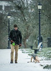 © Licensed to London News Pictures. 09/02/2021. London, UK. A dog walker braves the freezing conditions in the early morning on Primrose Hill in Camden, North London as snow continues to fall in the capital. Strong easterly winds from Ukraine and the Black Sea are expected to last in to the middle of the week. Photo credit: Ben Cawthra/LNP