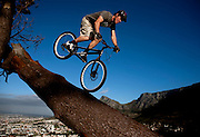 For once off publishing use in Sports Illustrated South Africa magazine. By copyright to Greg Beadle. Andrew Guess (26) of Gardens rides his trial bicycle on the granite outcrop above the Atlantic Seaboard. Mountain bike trials, also known as observed trials is a discipline of mountain biking in which the rider attempts to pass through an obstacle course without setting foot to ground. Derived from motorcycle trials, it originated in Spain and is said to have been invented by the father of Ot Pi, a world champion motorcycle trials rider. Pi's father had wanted his son to learn motorcycle trials by practising on an ordinary push bike..Trials riding is an extreme test of bicycle handling skills, over all kinds of obstacles, both natural and man-made. It now has a strong -- though small -- following worldwide, though it is still primarily a European sport. Skills taken from trials riding can be used practically on any bicycle for balance, for example controlled braking and track standing, or balancing on the bike without putting a foot down. Competition trial bikes are characterised by powerful brakes, wide handlebars, lightweight parts, single-speed low gearing, low tyre pressures with a thick rear tire, distinctive frame geometry, and typically a lack of seat. Andrew is one of a hanful of trial riders in South Africa. Picture by Greg Beadle
