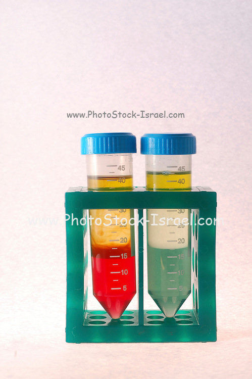 phase separation in test tubes