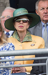 The Princess Royal watches the  King George VI at <br /> Ascot Racecourse, Ascot, United Kingdom<br /> Saturday, 27th July 2013<br /> Picture by  i-Images
