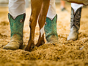 27 JUNE 2019 - CENTRAL CITY, IOWA: Participants in the Dairy Goat judging wear cowboy boots in the show ring at the Linn County Fair. Summer is county fair season in Iowa. Most of Iowa's 99 counties host their county fairs before the Iowa State Fair, August 8-18 this year. The Linn County Fair runs June 26 - 30. The first county fair in Linn County was in 1855. The fair provides opportunities for 4-H members, FFA members and the youth of Linn County to showcase their accomplishments and talents and provide activities, entertainment and learning opportunities to the diverse citizens of Linn County and guests.         PHOTO BY JACK KURTZ