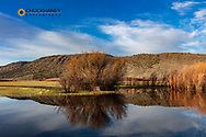 Wetlands at Malhuer NWR near Frenchglen, Oregon, USA