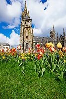 France, Finistère (29), Le Folgoêt, La basilique Notre-Dame // France, Brittany, Finistere, Le Folgoet, Notre Dame cathedral