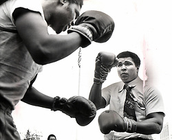 June 3, 2016 - File - MUHAMMAD ALI, the three time heavyweight boxing champion, has died at the age of 74. He had been fighting a respiratory illness. 'The Greatest' was the dominant heavyweight boxer of the 1960s and 1970s, Ali won an Olympic gold medal in Rome in 1960, captured the professional world heavyweight championship on three separate occasions, and successfully defended his title 19 times. PICTURED: November 2, 1977 - Michigan, U.S. - MUHAMMAD ALI, right, squared off with some local greats like DETROIT LARRY (left). World heavy weight boxing champion Muhammad Ali was in Detroit Tuesday and thousands of fans turned out to show him that they think he's the best, the champ, the greatest. (Credit Image: © Bob Scott/Detroit Free Press via ZUMA Wire)