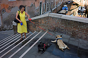 A dog owner and her two pet pugs with coloured leads who refuse to go any further while crossing a small bridge over a narrow canal in Dorsoduro, a district in Venice, Italy. Standing near the top of the small bridge that spans a minor canal in the western sestriere, we see the lady in a yellow dress holding red and blue leads that correspondingly hold the reverse dogs' collar colours. they refuse to move, stubbornly laying on the cool pavement during a midsummer heatwave.