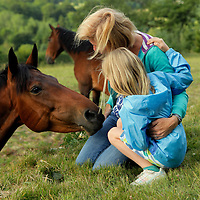 Europe, Ireland, Enniskerry. Horse encounter near Powerscourt in Enniskerry.