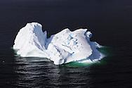 Bergy bit floating in Marguerite Bay