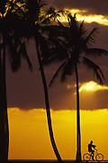 Bicycle, Sunset, Hawaii<br />