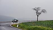 Duitsland, Gottingen, 5 jan 2013.Buitengebied van Gottingen, weggetje met boompje, slecht weer, nevel, auto.Foto(c): Michiel Wijnbergh