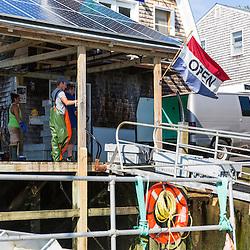 """Captain Matt Clemmons (""""Mean Kathleen"""") runs the conveyer belt at Potts Harbor Lobster in Harpswell, Maine."""