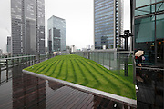 roof garden on top of the renovated Kitte, The former Central Post Office building by architect Kengo Kuma