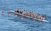 London, United Kingdom.  Wallingford RC.   A Crew, Barnes bridge Rail Bridge, 2014 Women's Head of the River Race. Chiswick to Putney, River Thames.  Saturday  15/03/2014    [Mandatory Credit; Peter Spurrier/Intersport-images]