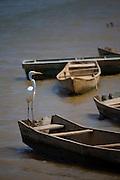 Guaicui_MG, Brasil...Rio Sao Francisco, o rio da integracao nacional, Minas Gerais...The Sao Francisco river, It is an important river for Brazil, called the river of national integration, Minas Gerais...Foto: JOAO MARCOS ROSA / NITRO