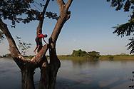 Along the Magdalena River