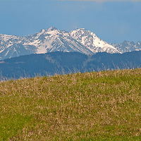 The Absaroka Mountains rise behind a meadow in the southern Bridger Mountains, near Livingston, Montana.