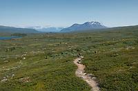 Single track trail of Padjelantaleden Trail though high mountain terrain north of Låddejåhkå in Padjelanta national park, Lapland, Sweden