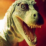 Dinosaur, London, England (May 2007)