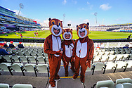 Three fans dressed as chipmunks an Edgbaston Stadium before the NatWest T20 Finals Day 2017 semi final match between Birmingham Bears and Glamorgan County Cricket Club at Edgbaston, Birmingham, United Kingdom on 2 September 2017. Photo by Graham Hunt.