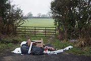 Rubbish dumped, Sandhurst Lane, Bexhill on Sea. 11 January 2018