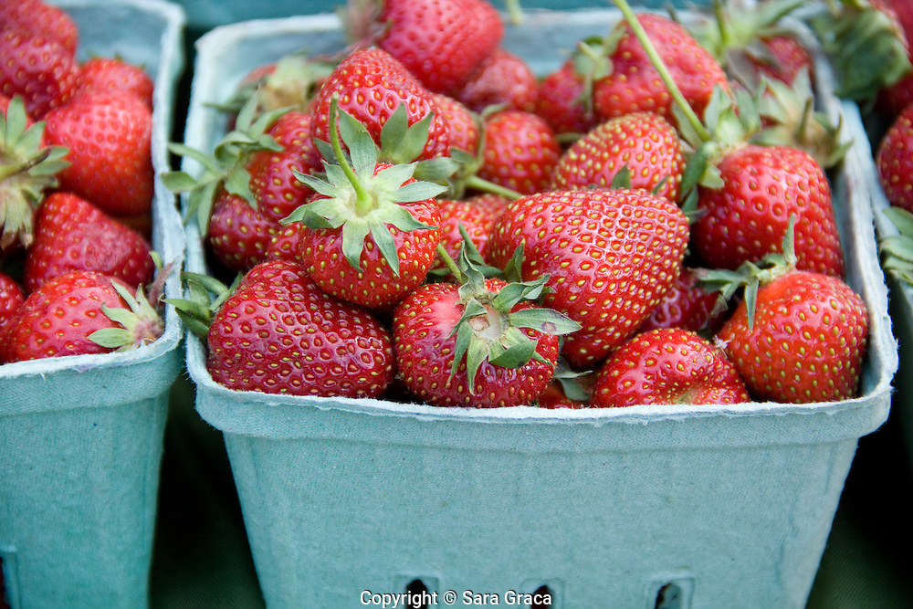 """""""Our job is to make sure that every customer gets a heaping-full quart of strawberries without any bad berries,"""" says Morning DEW Orchard's owner Doug Woolf."""