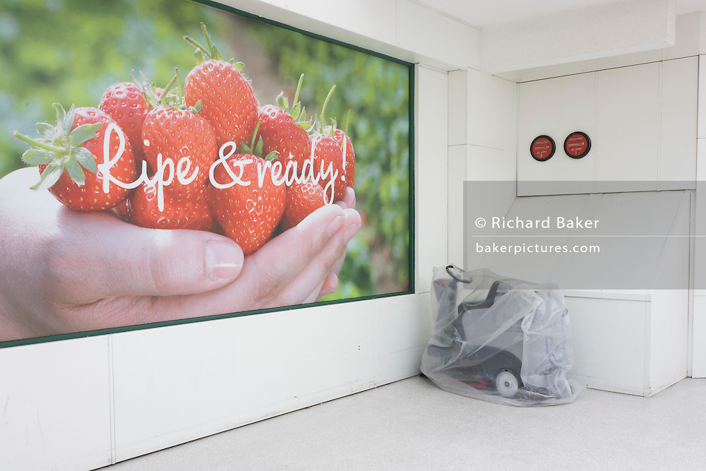 A handful of perfect strawberries with a Morrisons supermarket slogan next to a covered floor polisher.
