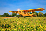 A 1946 J3 Cub in the grass at Peachstate Aerodrome, Williamson, Georgia.  Owned and restored by Matt Tisdale.