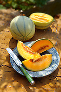 Fresh cut Cantaloupe melon from Charentais in France