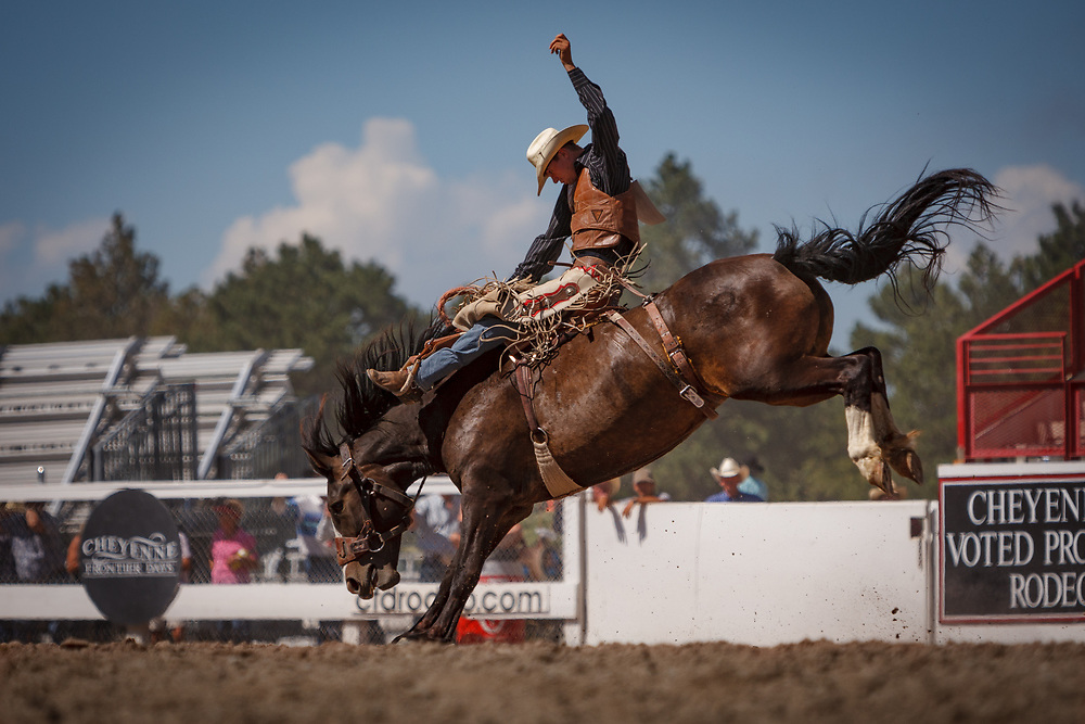 TYREL LARSEN performs in the Saddle Bronc Riding competition during Cheyenne Frontier Days, the world's largest outdoor rodeo.
