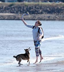A dog has fun in the sea at Portobello Beach in Edinburgh during a sunny first day of Autumn.<br /> <br /> Edinburgh Weather Pictures, Thursday 22nd September 2016<br /> <br /> (c) Alex Todd | Edinburgh Elite media