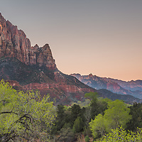 Even though this spot is better known for its sunset views, I decided to chance it at dawn. You can't really go wrong in a place as beautiful as Zion. Even the sky, though plain and cloudless, seemed grateful for such a morning.