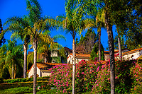 A neighborhood, Santa Barbara, California USA.