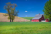 Barn building in the agricultural Palouse area of eastern Washington state. The Palouse is a region of the northwestern United States, encompassing parts of southeastern Washington, north central Idaho and, in some definitions, extending south into northeast Oregon. It is a major agricultural area, primarily producing wheat and legumes.