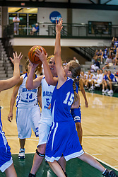 20 June 2009: Kindi Bullard.  Illinois Basketball Coaches Association 1A-2A Girls All Star game.