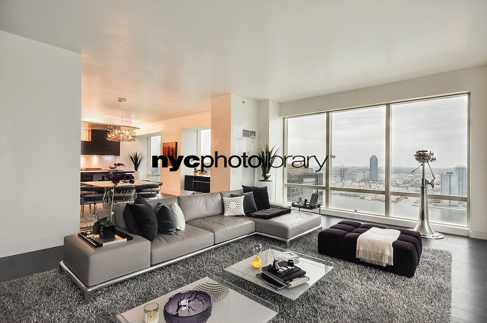Living Room at 845 United Nations Plaza