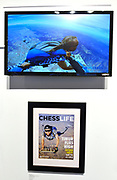 A video of chess grandmaster Timur Garayev jumping out of an airplane as he plays chess is on display at the World Chess Hall of Fame in St. Louis where a new chess history exhibition, US Chess: 80 Years—Promoting the Royal Game in America, opened with a free opening reception event on March 6, 2019. The chess exhibit will be on display through October 27, 2019. <br /> (Tim Vizer/AP Images for  World Chess Hall of Fame)