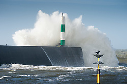 © Licensed to London News Pictures. 13/03/2019. Aberystwyth, UK. Gale force winds from Storm Gareth - the third named storm of 2019 - hit  Aberystwyth on the Cardigan Bay coast, West Wales on Wednesday afternoon.  Gusts  of  up to 70 or 80mph are forecast in exposed Northern regions, with the risk of serious damage to property and severe disruption to travel and power services. Photo credit: Keith Morris/LNP