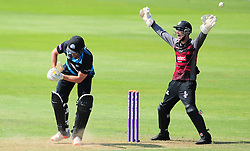 Ryan Davies appeals for the wicket of Jack Shantry.  - Mandatory by-line: Alex Davidson/JMP - 17/08/2016 - CRICKET - Cooper Associates County Ground - Taunton, United Kingdom - Somerset v Worcestershire Rapids - Royal London One Day Cup Quarter Final