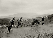 High Albania, the Accursed Mountains, near the mountain village of Kalimash. Women collecting wood for fuel.