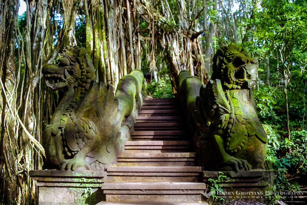 Bali, Gianyar, Ubud. Monkey Sanctuary. This stairway leads down to the sacred bathing temple in the monkey forest. The stairs are guarded by two lions.