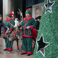 Woman pets a reindeers in front of a mall promoting the charity of the Santa Factory as part of Hungary's Christmas celebrations in Budapest, Hungary on December 02, 2014. ATTILA VOLGYI