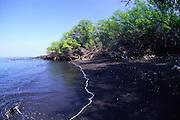Okoe Bay, Island of Hawaii<br />