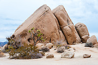 United States, California, Joshua Tree National Park. Jumbo Rocks.
