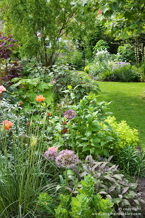 Curving borders with Stipa gigantea and Allium cristophii in the foreground