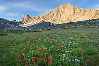 Pronghorn and Dragon Head Peaks, near Lee Lake, Bridger Wilderness. Wind River Range, Wyoming