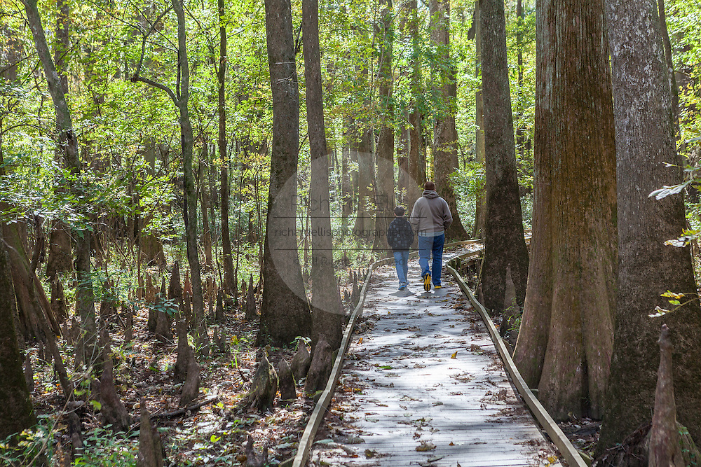 A family walks the boardwalk loop through Congaree National Park, the largest intact expanse of old growth bottomland hardwood forest remaining in the southeastern United States in Columbia, South Carolina.
