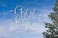 Lys og trivelig høytidshilsen 'God jul & godt nytt år!' på bilde av blå himmel flankert av bartrre med snø.