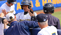 April 20, 2017 - Trenton, New Jersey, U.S - THAIRO ESTRADA of the Trenton Thunder is congratulated by his team as he enters the dugout after he scores a run in the game vs. the New Hampshire Fisher Cats at ARM & HAMMER Park. The Thunder won 5-4. (Credit Image: © Staton Rabin via ZUMA Wire)