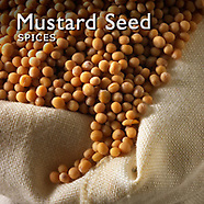 Mustard Pictures | Mustard Seed Photos Images & Fotos
