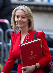 © Licensed to London News Pictures. 29/10/2018. London, UK. Chief Secretary to the Treasury Elizabeth Truss arrives on Downing Street for a Cabinet meeting before Chancellor of the Exchequer Philip Hammond delivers the budget. Photo credit: Rob Pinney/LNP