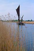 AREJTB Sailing barge Cygnet River Alde Snape Suffolk England